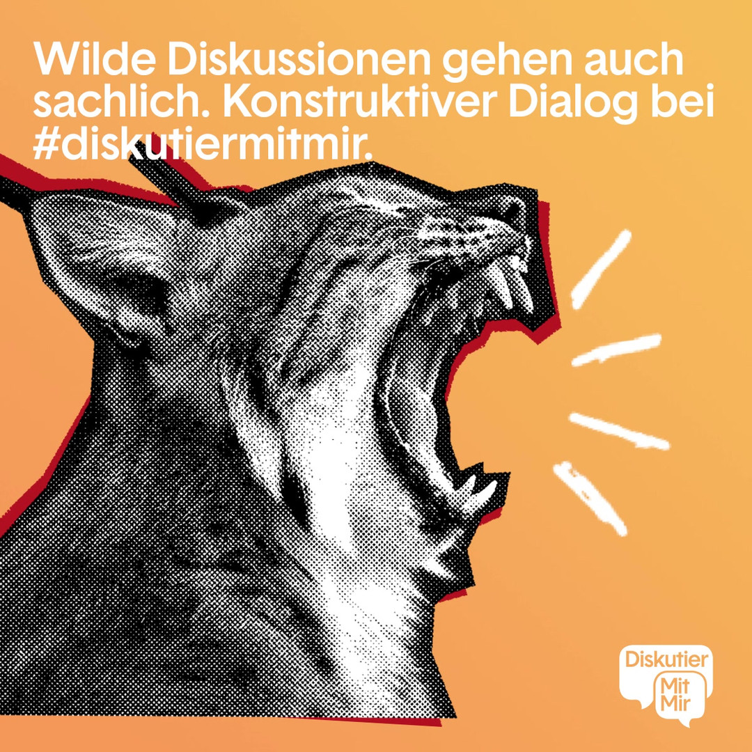DMM_wilde-diskussion (1).mp4