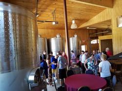 vineyards oct 2017 (48)