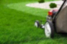 Conseil d'entretien de pelouse - tonte
