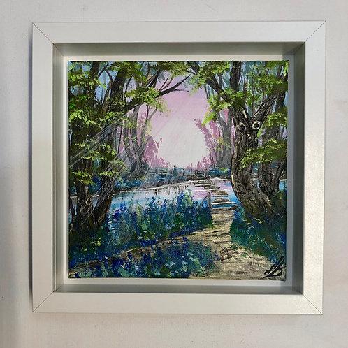 Morning walk in Bluebell wood