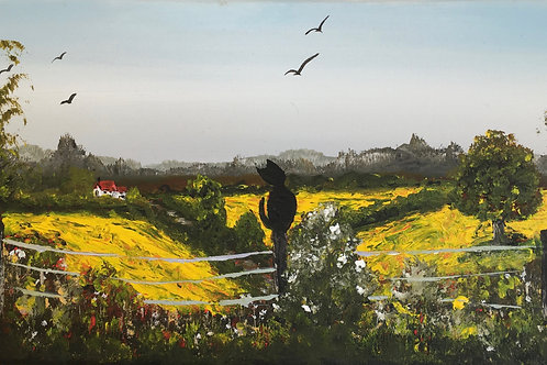 Rapeseed fields and the cat