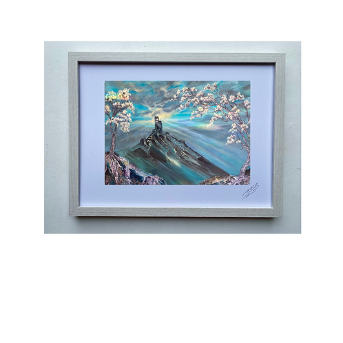 Framed Print of Corfe Castle in Bloom