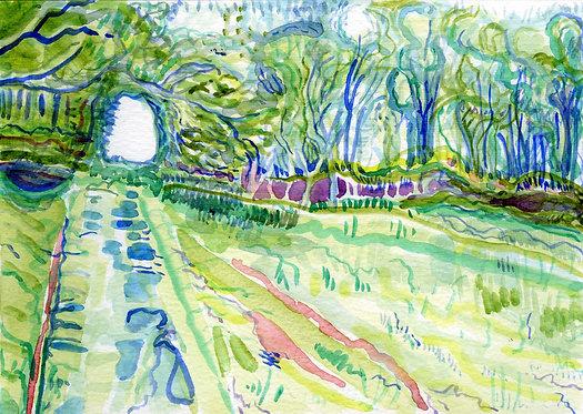 A Path on Aird Farm