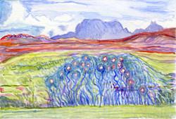 Marjorie's Roses, Opinan