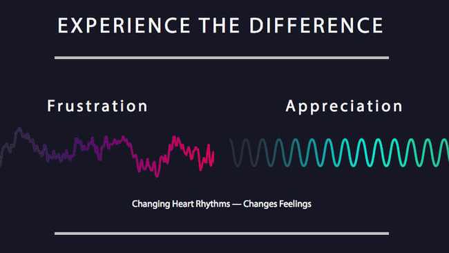 Biofeedback for the Mind Body Connection