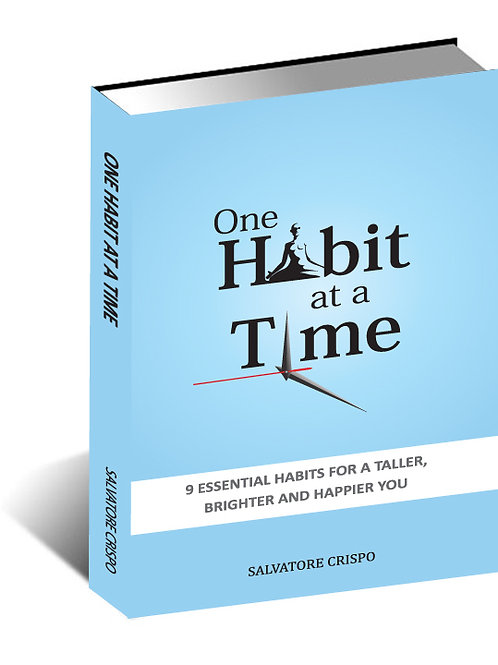 One Habit At A Time (Ebook)