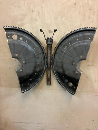 Butterfly_Hanging1656.JPG