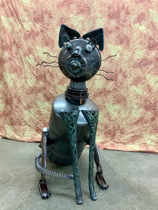Cat 4'.JPG