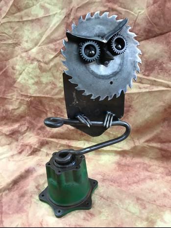 Owl_Med1621.jpg