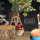 Healthy Food Campaign