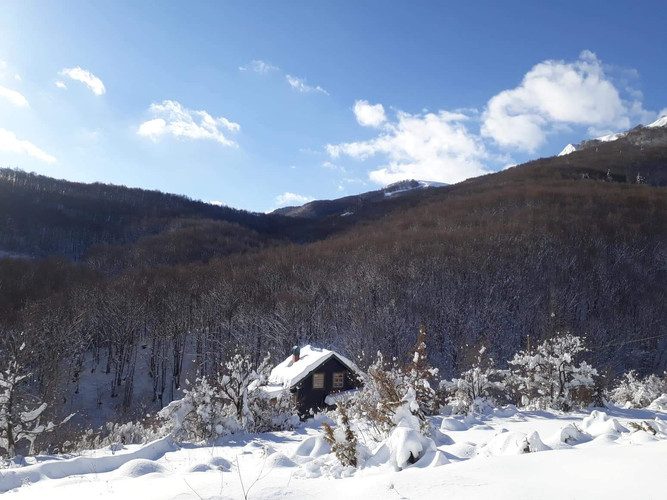 winter 1.2.jpeg