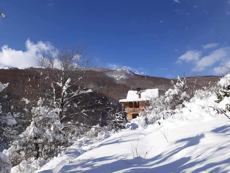winter 1.5.jpeg