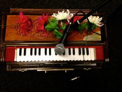 The humble harmonium - beautiful during kirtans.