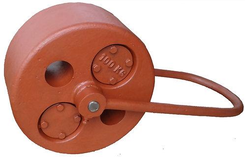 100Kg Roller Weight Standard Handle