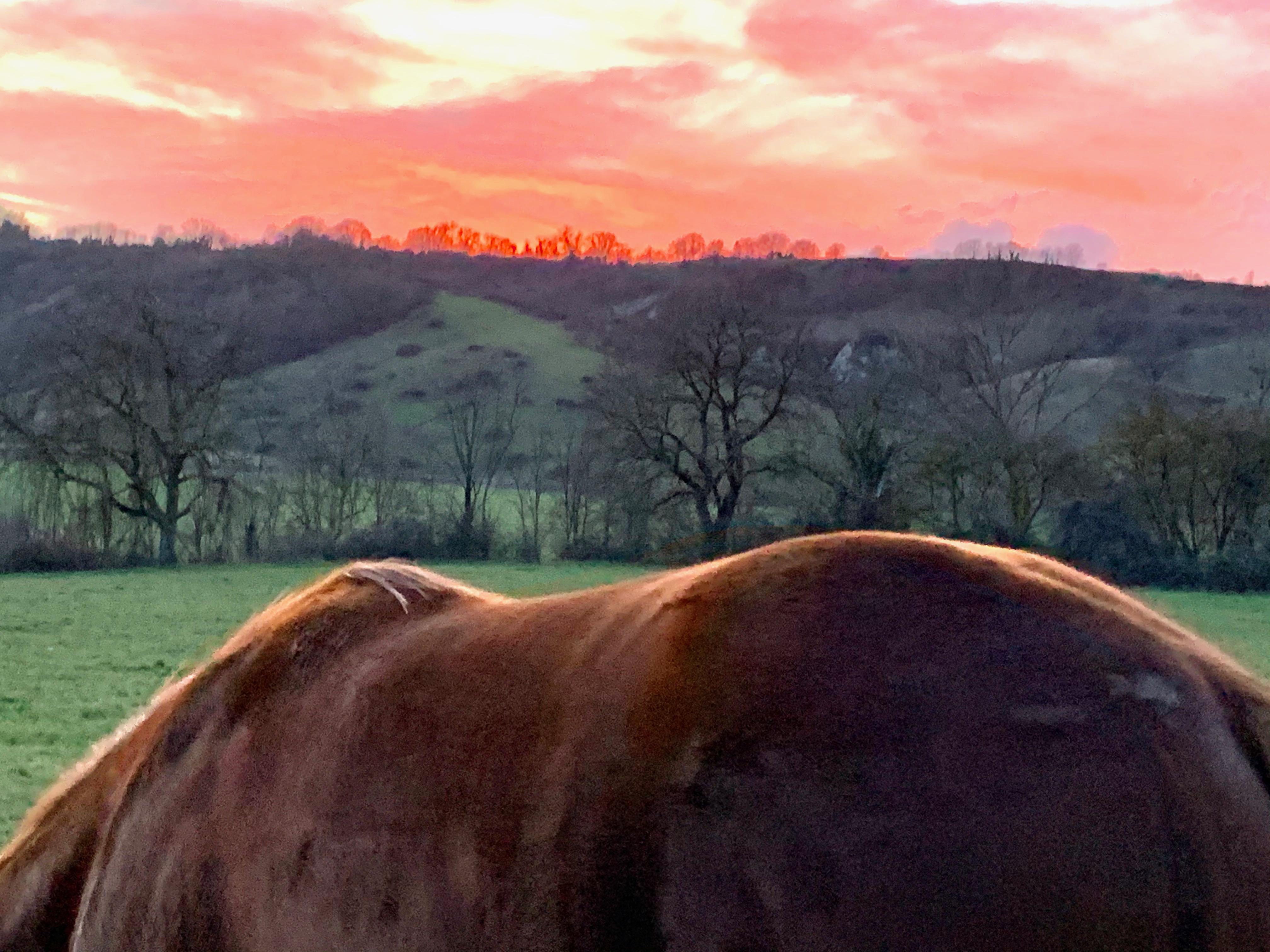 tramonto e colline