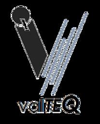 valteQ_logo2_edited.png