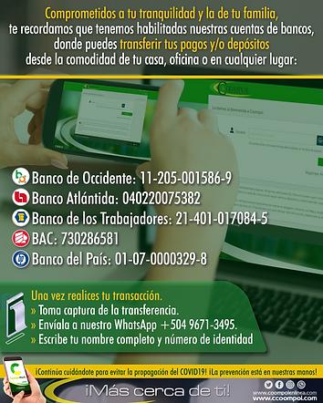 Numeros de Cuentas.png