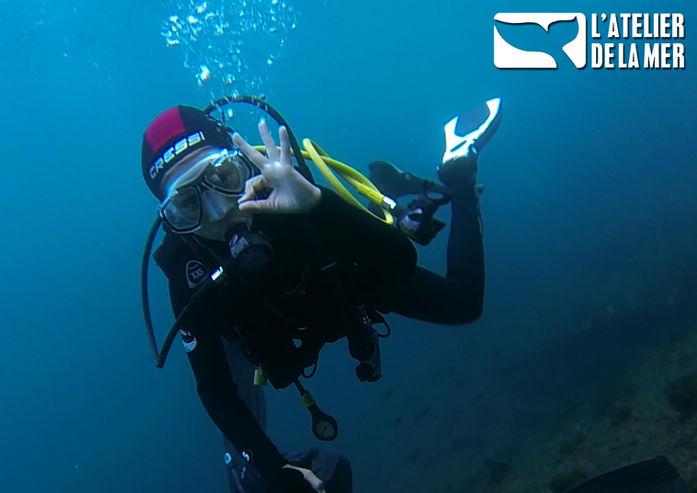 Baptême de plongée à Marseille avec L'Atelier de la Mer. Découvrez les sensations des plongeurs...