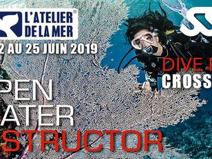 Formation DIVE PRO SSI du 22 au 25 juin 2019