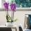 Thumbnail: Maceta Living Flowerbox One 25cm