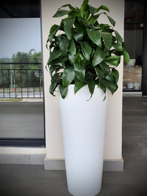 Maceta Hydra 39x85 cm