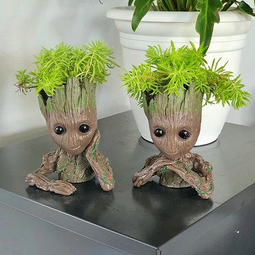 Pote Groot + Suculenta Sedum
