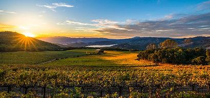 Napa Valley .jpg