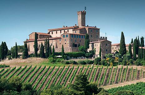 Banfi vineyard.jpg
