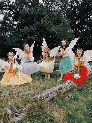 Tiny T's Rainbow Fairies.jpeg