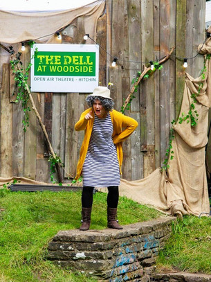 Spectacular Tiny T's Theatre The Dell