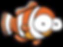 Las Vegas Clownfish
