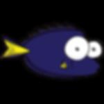 Las Vegas Saltwater Fish