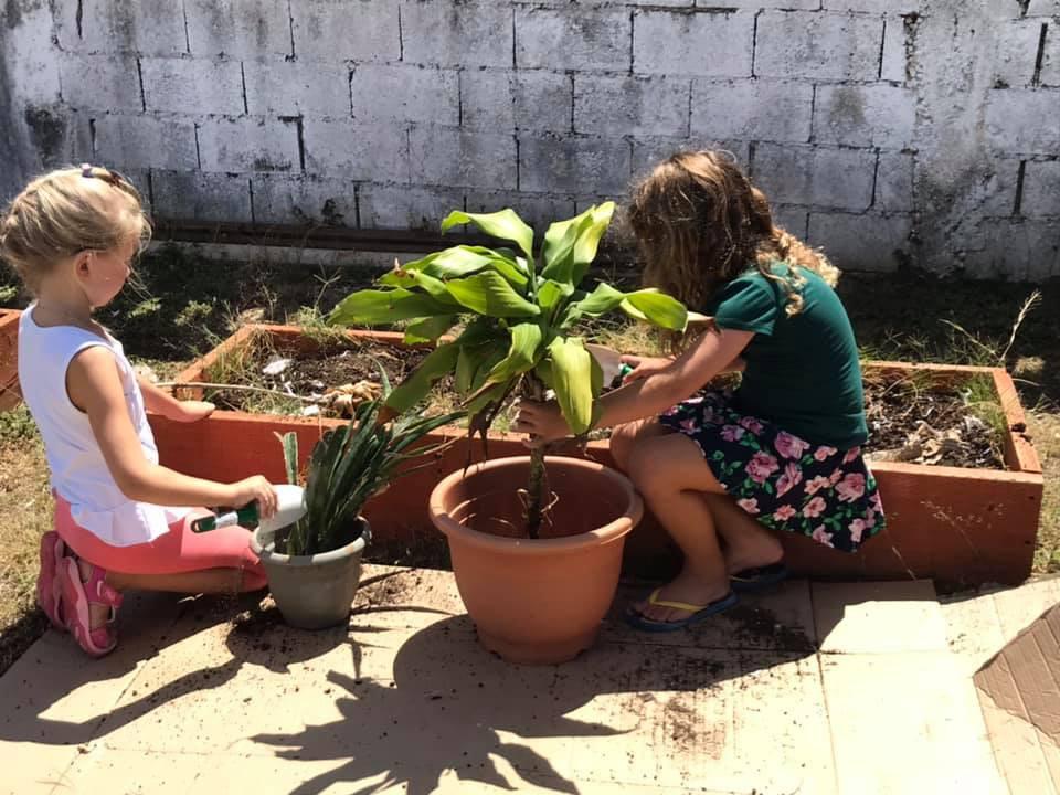Potting Plants LE