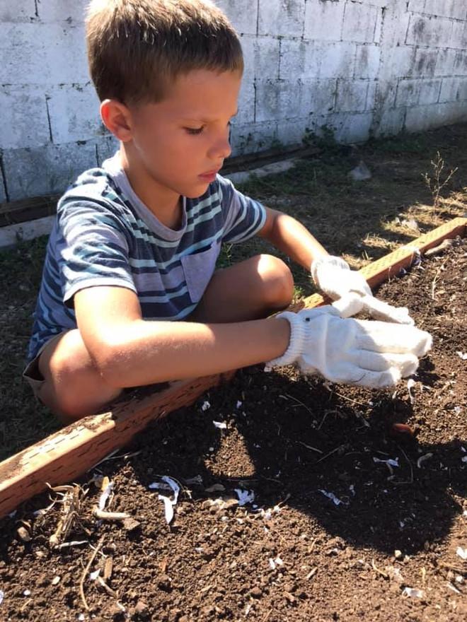Replanting Our Garden LE