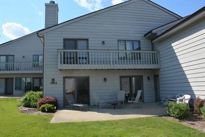 Strong 2019 Delavan Lake Real Estate Sales Deplete Inventory