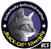 BCS logo.png