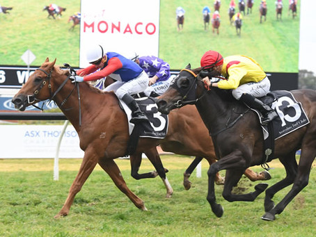 Blue-Blood Exceed and Excel Colt Wins G3