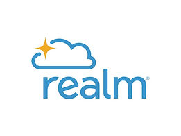 Realm_Web.jpg