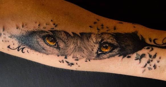 tatouage les yeux du loup dans une plume