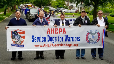 service-dogs-banner.png