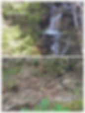 Ruisseau_avant-APRES.jpg