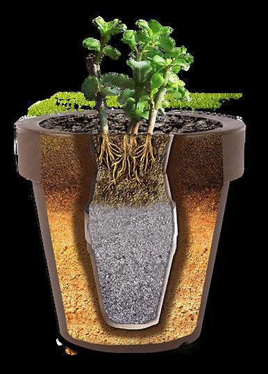 La Urna Ecológica Peternity se puede plantar en cuaquier maceta o en el jardin e tu casa.