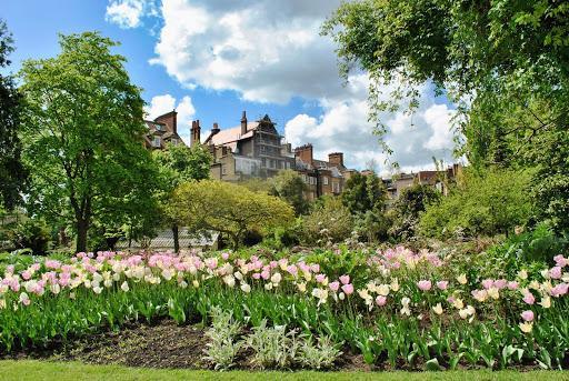 Chelsea-Physic-Garden-London-Elisa-Rolle-公園-自然-花-緑-雲-ヨーロッパ