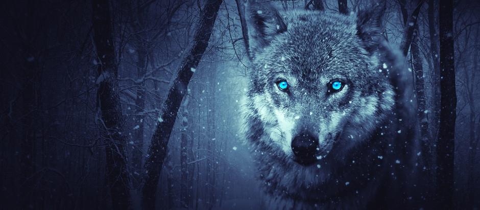 Τα τέρατα του Χάλοουστοουν - Μέρος 8: Περπατώ περπατώ εις το δάσος...