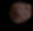 Dark Chocolate Truffle.png