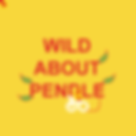Wild-About-Pendle.png