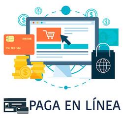 Paga en línea