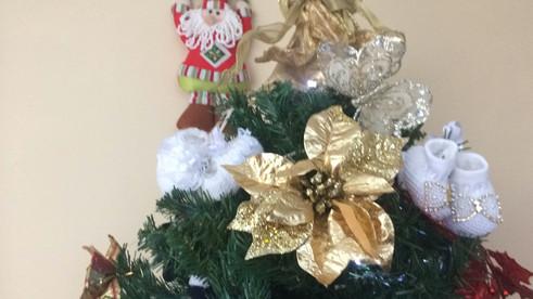 Tempo de decorações Natalinas