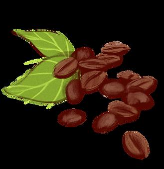 Kaffe Compagniet as Kaffebønner.png