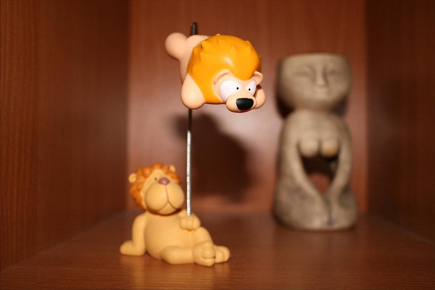 lions box 2.jpg
